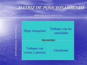 MatrizAR-300x225