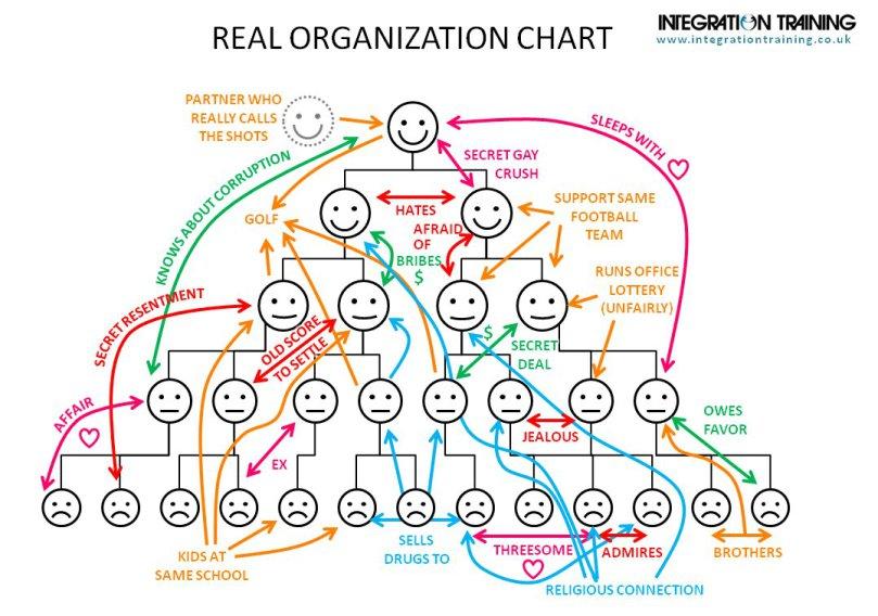 organizaciocc81n